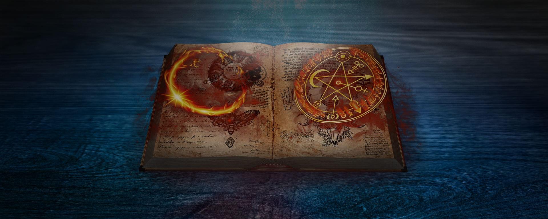 The Shadow Journals Book