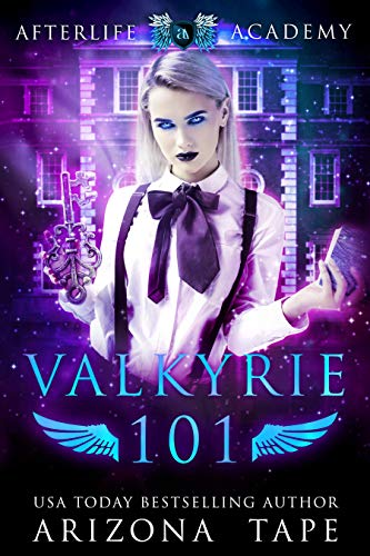 Valkyrie 101 Book Cover